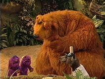 Bear410e