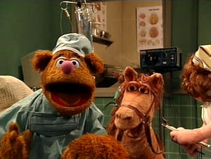 MT.DoctorFozzie