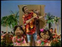 Song.hawaiiancowboy