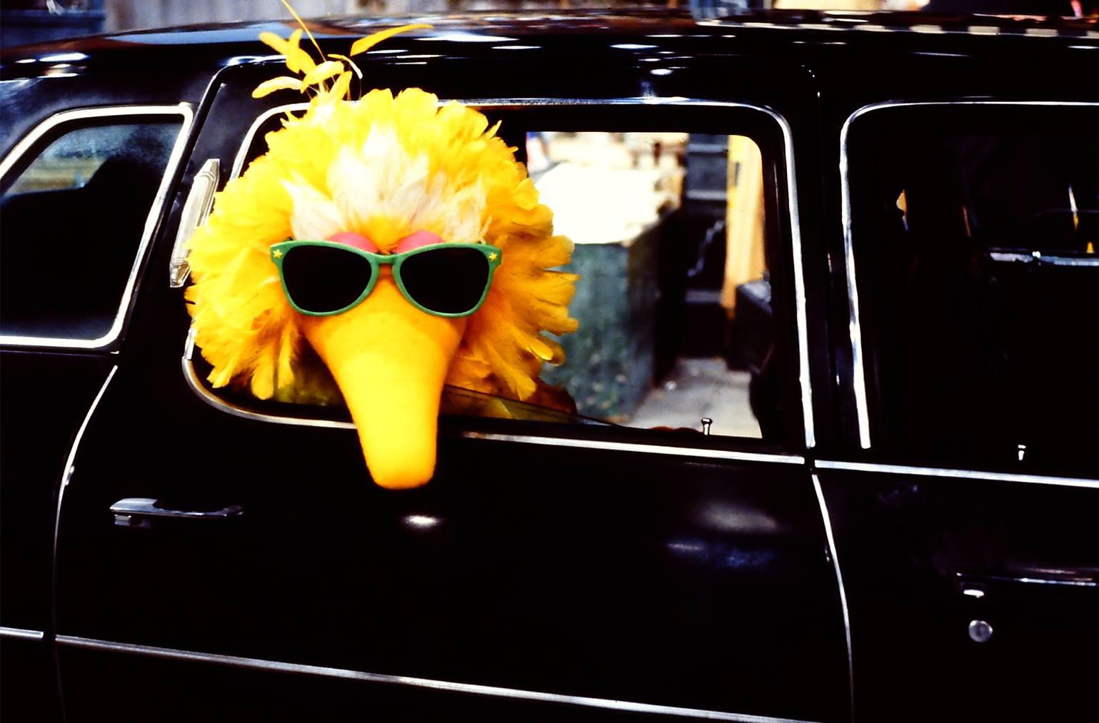 Sesame Street - The Movie | Muppet Wiki | FANDOM powered by