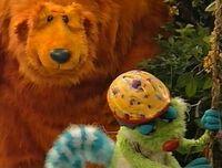 Bear415k