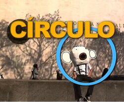 CircleHead