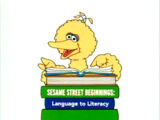 Language to Literacy