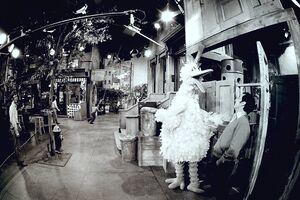 70s fisheye lens street bb bob