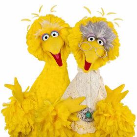 BigBird-and-GrannyBird