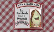 Muppet Ida Thornbush