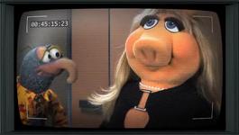 Muppets-com45