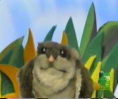 AnimalShowS3-FlyingSquirrel