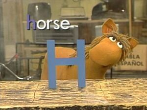 Busterthehorse
