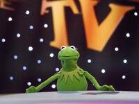 TF1-MuppetsTV-PhotoGallery-11-Kermit
