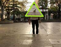 TriangleHead
