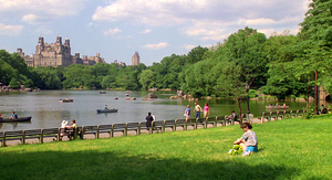 CentralPark-TheLake&BowBridge