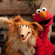 Elmo and collie dog