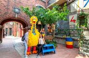 Universal studios singapore big bird's nest