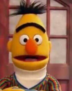 Bert 2013