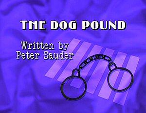 Thedogpound