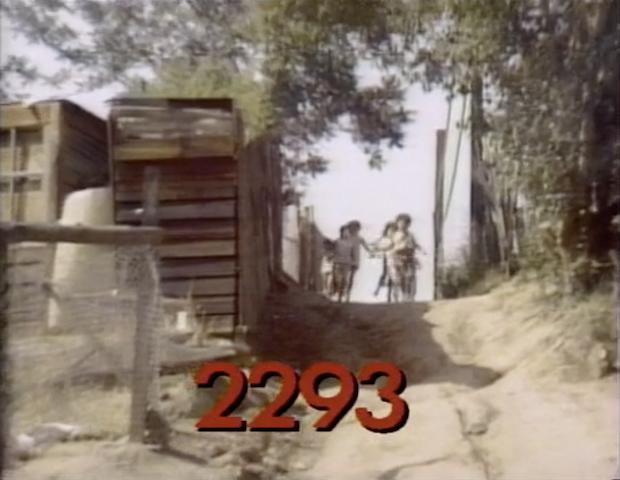 2293.jpg