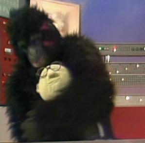 Gorillabunsen
