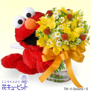 Elmo bouquet japan
