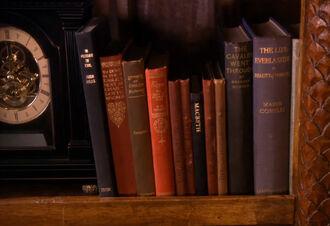 MmBodyDouble Bookshelf