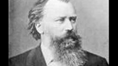 Brahms Sonata for Cello and Piano in E minor 1st Movement