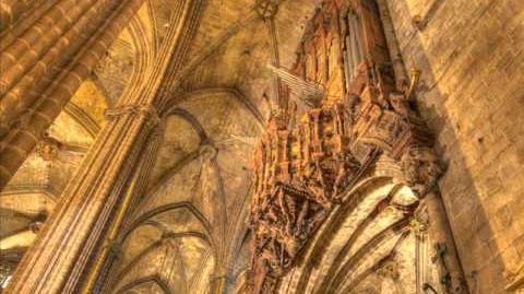 Antonio Salieri Organ Concerto - Allegro ma non molto (1.)