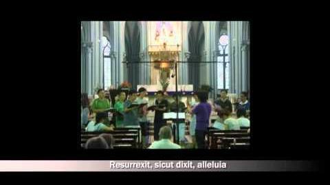 2010.07.10 Regina Caeli Laetare