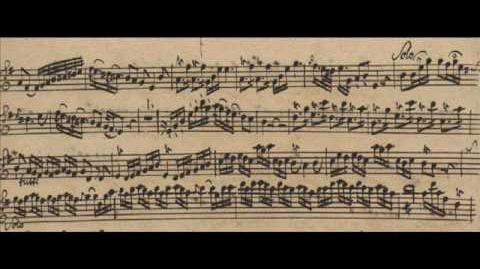 Quantz Concerto for 2 Flutes in G Major