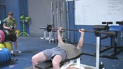 Mark Rippetoe Bench Press Positioning