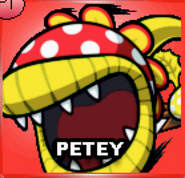 YellowPetey