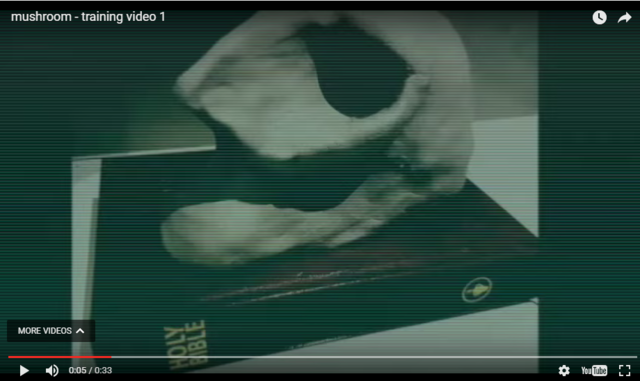 File:Screen0 05 skull and bible.png