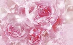 File:Pink Rose.jpg