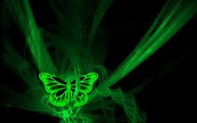 File:Green Butterfly.jpg