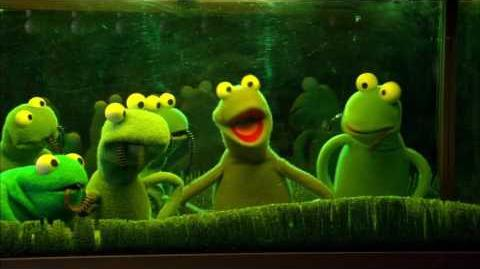 Kermit's Swamp Years - Life as a Pet (2002, Widescreen) (French 5