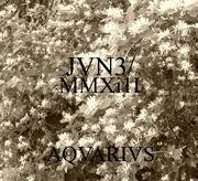 2. JVN3-MMXi1I