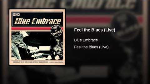 Feel the Blues (Live)