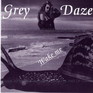 Grey Daze - Wake Me (Cover)