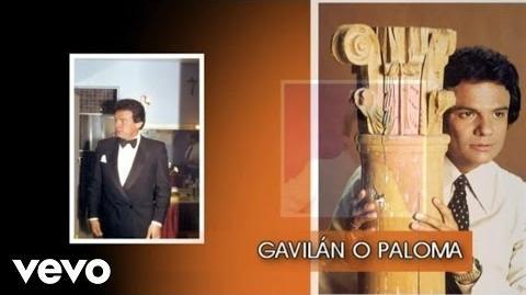 José José - Gavilán o Paloma