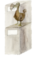 Dodo on Stand New