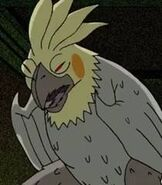 Parrot-ben-10-2.15