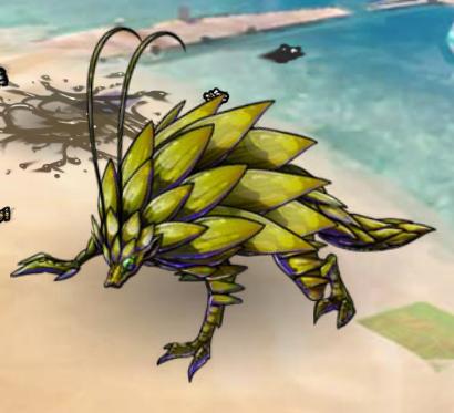 Slashog at beachclash