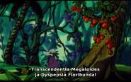 Hemuli viidakossa