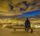 Sheltering Sky: Colorado by Night