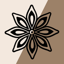 Spices Icon FP