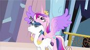 Shining armor y cadance