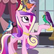 La princesa cadance