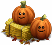 Decoration pumpkins