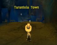 TarantulaTown