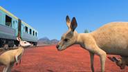 KangarooChristmas94