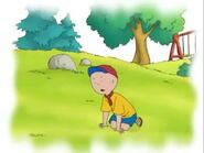 Caillou falls down on bruises his knee